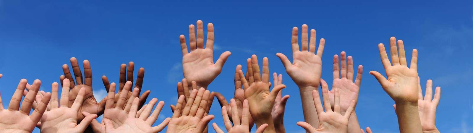 Udruga za razvoj civilnog društva Bonsai