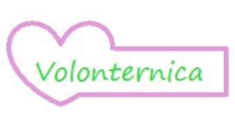 Volonternica 2014 - logo